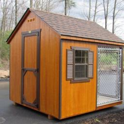 8x8 dog kennel